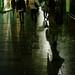 雨上がりの歩道