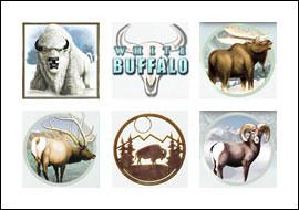 free White Buffalo slot game symbols
