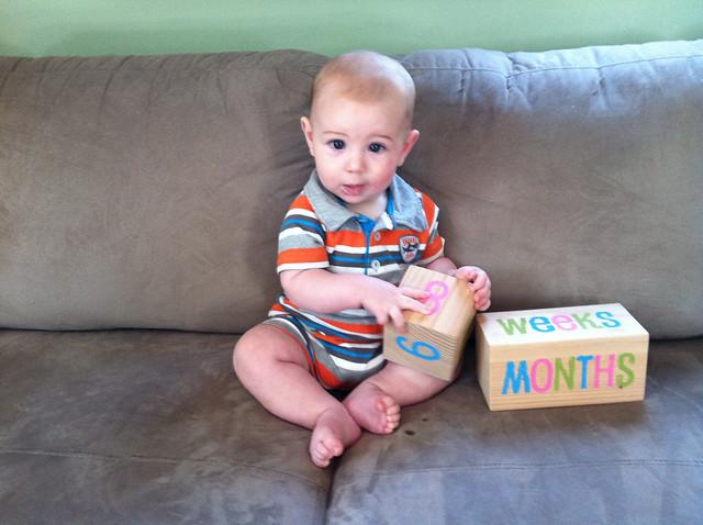 6 months-6