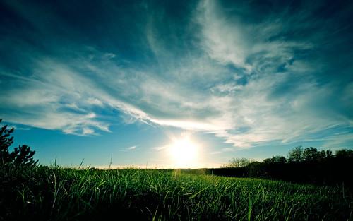 [フリー画像素材] 自然風景, 草原, 空 ID:201205222000