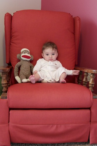 Alice, 5 months old, Chair Series