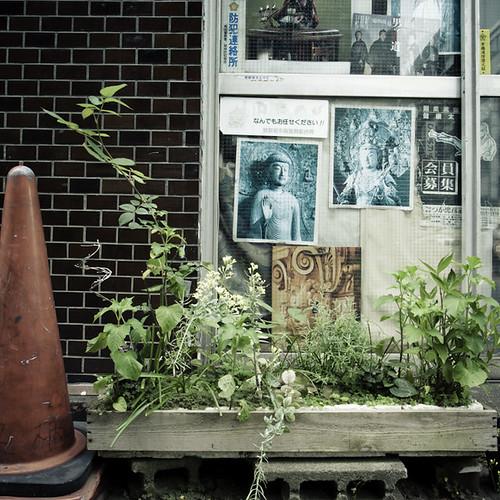 Higashi Ginza Cone Guarded Garden
