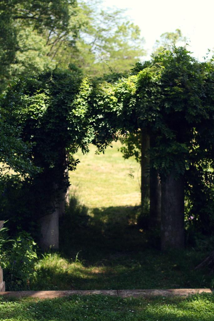 Ayrshire Farm