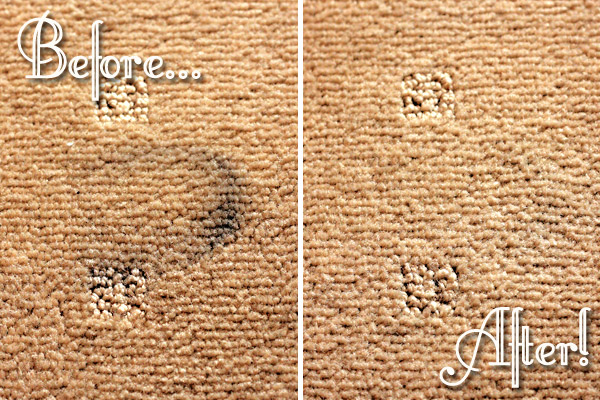Shoe Polish Carpet Stain