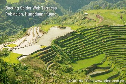 Bacung Spider Web Terraces in Hungduan, Ifugao