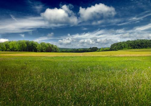 無料写真素材, 自然風景, 草原, 風景  アメリカ合衆国
