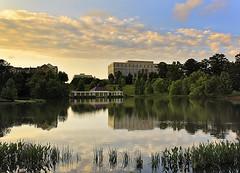 Milton Park Lake #2