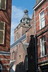 <p>Gezicht op de Buurkerk, waar Sarah Sibilla Verdion begraven werd, genomen vanaf het Buurkerkhof. Foto: Anna van Kooij.</p>