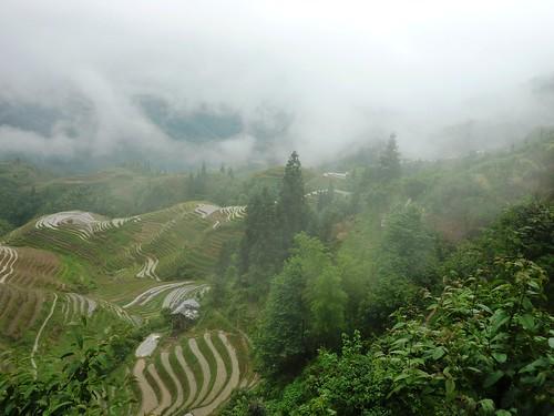 C-Guangxi-Pingan-Terrasse des 7 etoiles (46)