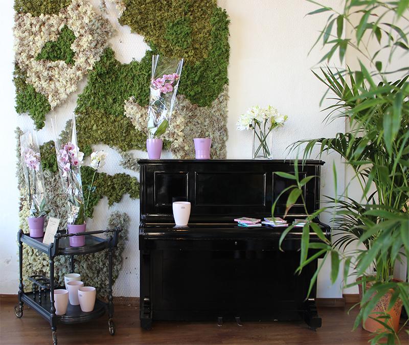 Piano Alea Floristas
