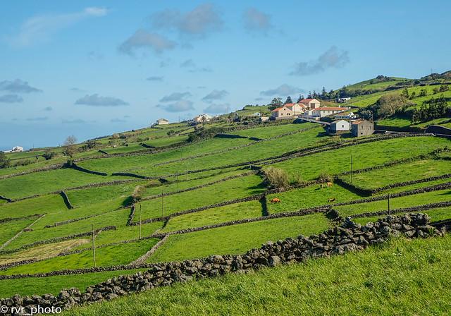 Campos de pasto para ganado, Isla Terceira