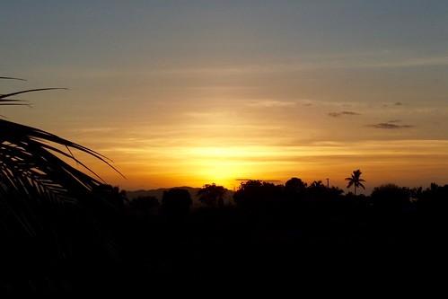fiji fujifilm 3500 night sillouete tree colours colour black sunset crusade nadi atardecer sol s singatoke westernfiji