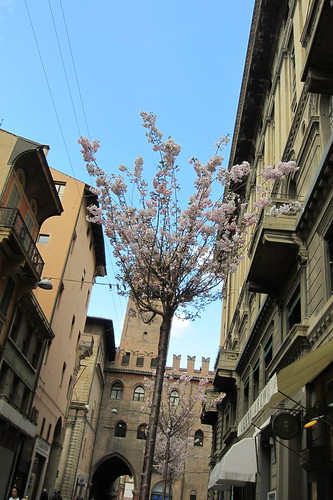 Bologna, Italy (Day One)