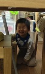 テーブルの下からこちらを見て笑うとらちゃん(2012/3/31)
