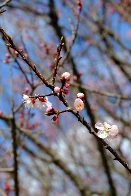 2012-04-01 14-40-00