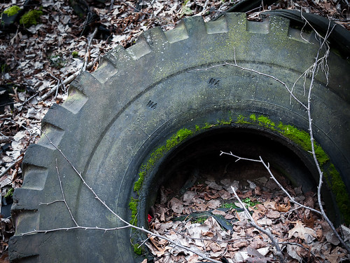 leaves wisconsin moss branches rubber tires erosion pollution subjects eauclaire miscobjects lowescreek
