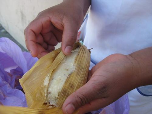 Fresh tamales, Oaxaca, Mexico