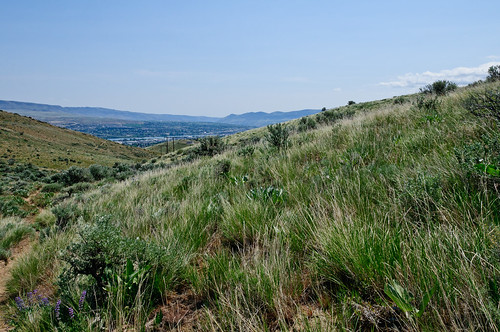 Wenatchee - Sage Hills - Lester Trail 17May2012 hha_9614 by 2HPix.com - Henry Huey