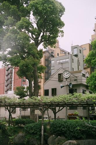 yashica-electro35-fuji100-24-0426-006
