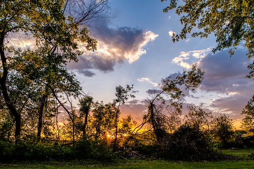 trees sky sunshine clouds landscape golden evening spring backyard flickr glow bright peaceful cumulus blueskies sunnyday facebook susnet fairweather