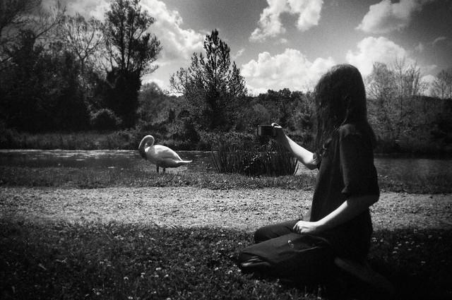 #3 Barnsley Garden, April, 2012