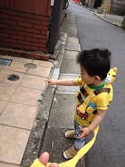 朝散歩 (2012/5/25)