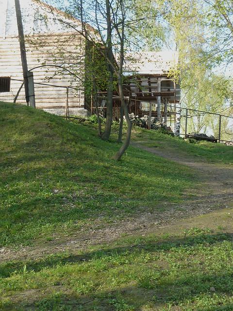 Лошица Тропинка, по которой Ядвига Любанская сбежала к реке после ссоры с мужем
