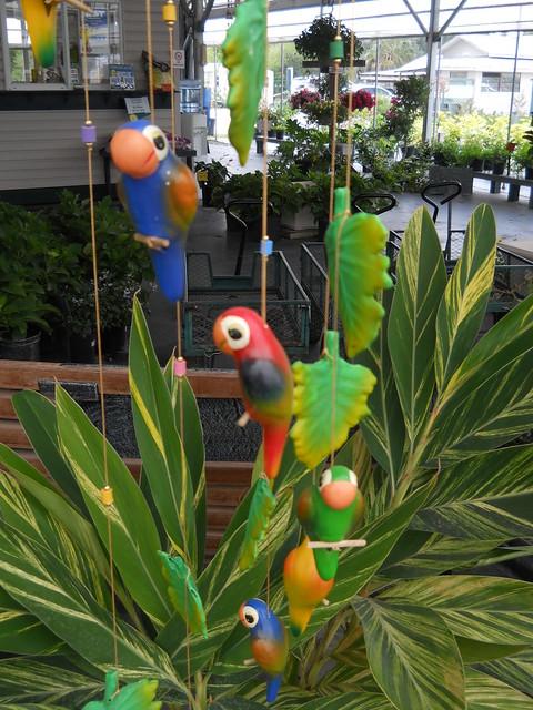 Hanging Parakeet decoration 02