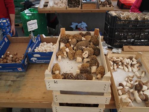 Pilze, Morcheln, Champignons, Marktgasse Winterthur