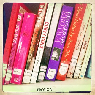 a snapshot of the erotica shelf of the Bitch Lending Library