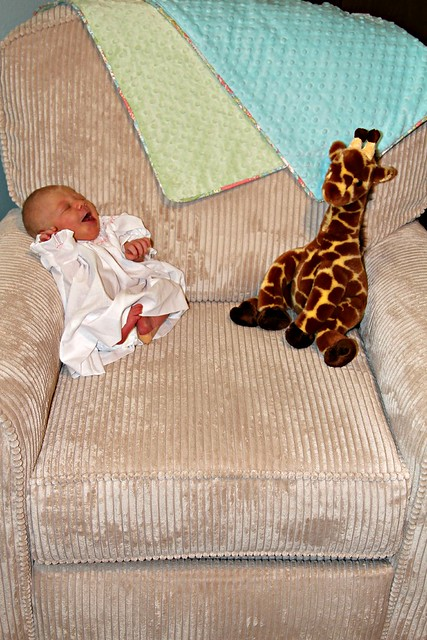 M and Her Giraffe
