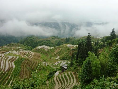 C-Guangxi-Pingan-Terrasse des 7 etoiles (50)