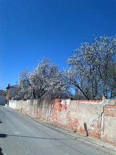 Primavera en la Calle Yeserias de Noblejas