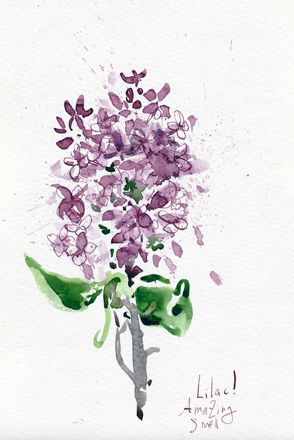 Sketchbook #95: Lilac