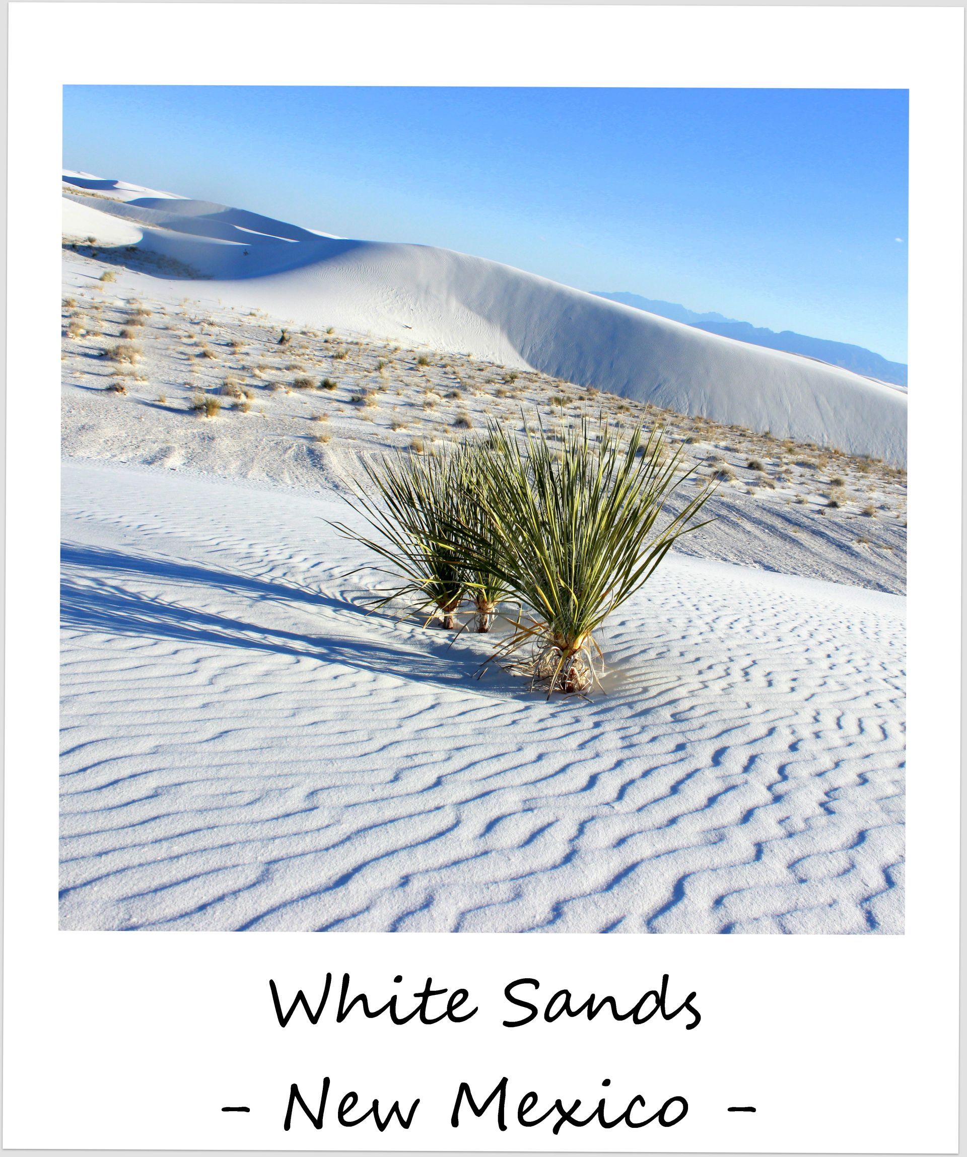 polaroid of the week usa new mexico 2016 white sands