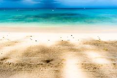 Payne's Bay, Barbados