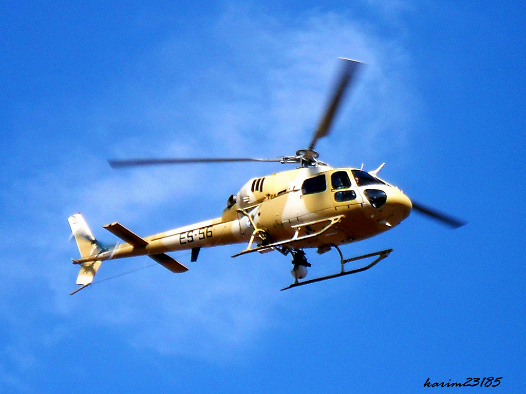 صور مروحيات القوات الجوية الجزائرية Ecureuil/Fennec ] AS-355N2 / AS-555N ] - صفحة 5 27307975241_df33ae8e5d_o