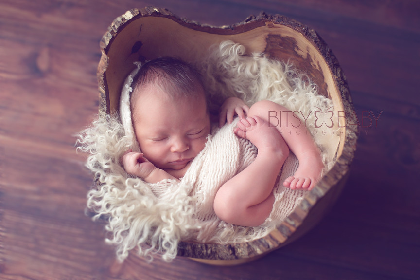 newborn photographer bitsy baby