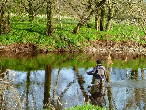 Jim stalking a trout