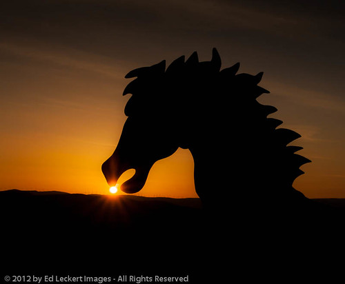sculpture color animal horizontal outdoors nopeople stallion maleanimal wildhorsemonument davidgovedare canoneos5dmarkii grandfathercutsloosetheponies
