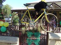 lyndoch_road_10_tour_down_under_20jan2010_bt
