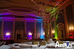Espiritu-Damani Wedding