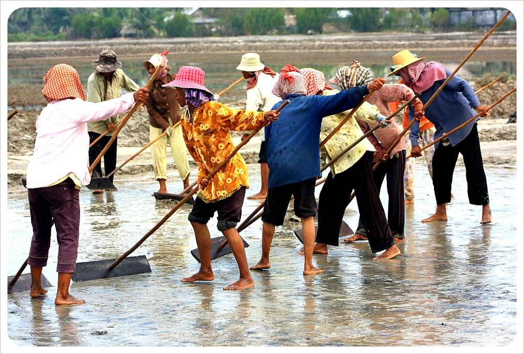 salt field workers cambodia