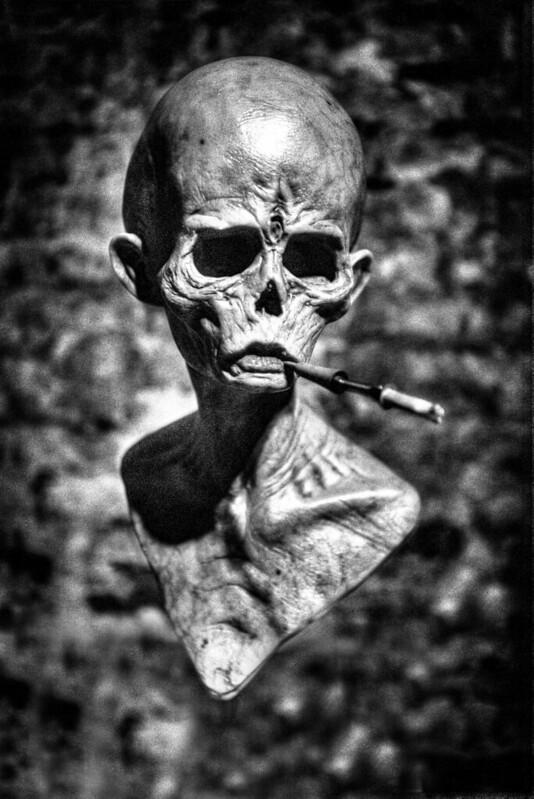 Gravitas Skull