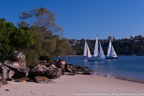 Manly scenic-2097