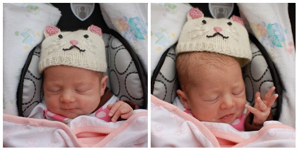 Lila's ill-fitting kitten hat