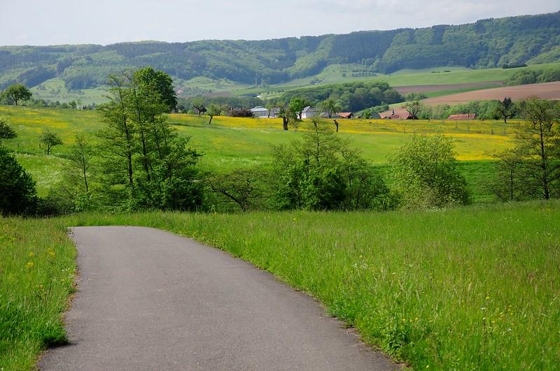 Balade de l'Arbre de mai : Eifel et Moselle [2012] saison 7 •Bƒ   - Page 5 7247743934_ebc48b95bb_c