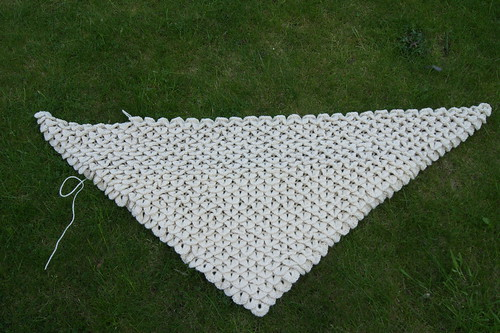 Crocodile Stitch Shawl