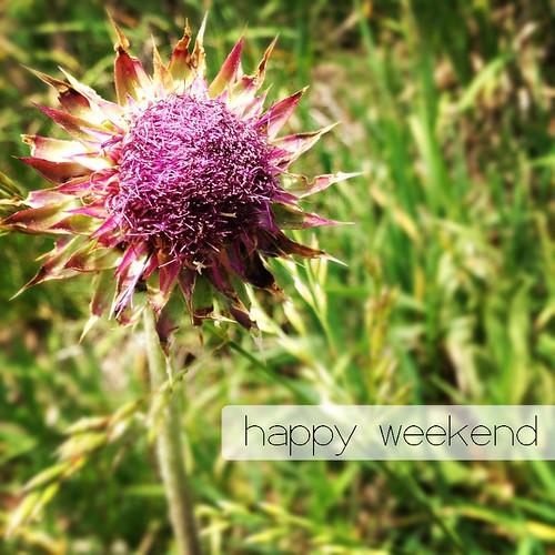 happy_weekend_5-25