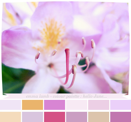 colour palette : hello June...